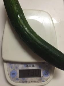 きゅうりの値段の相場はどれくらい?1本あたりの重さ・グラム ...